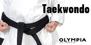 taekwondo valencia